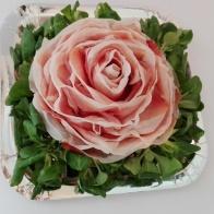 rosa prosciutto