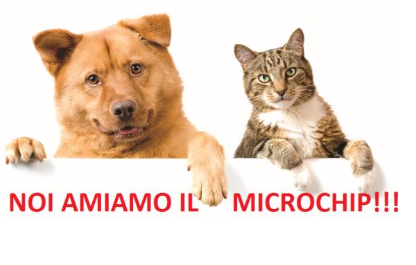 Immagine microchip