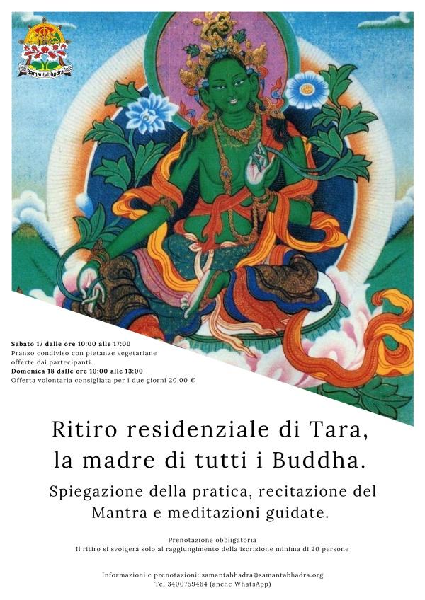 TARA-001