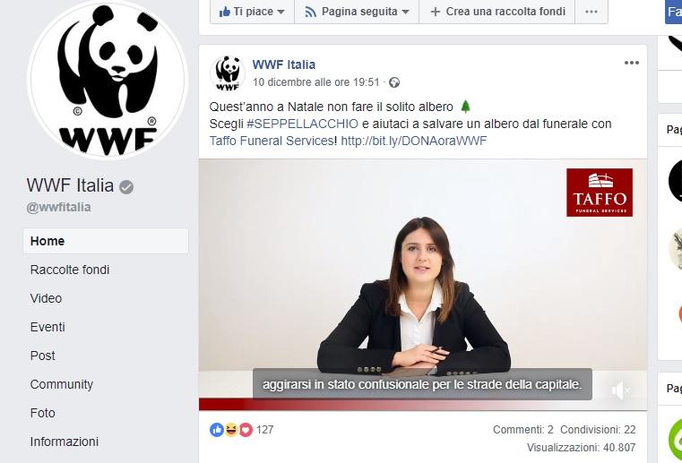 Taffo e WWF_contro il disboscamento_seppellacchio