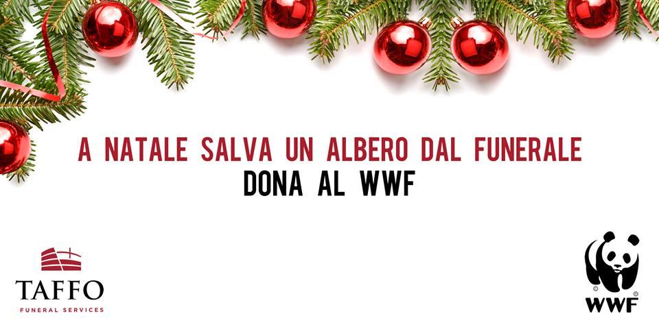 TAFFO_Banner_dona la WWF